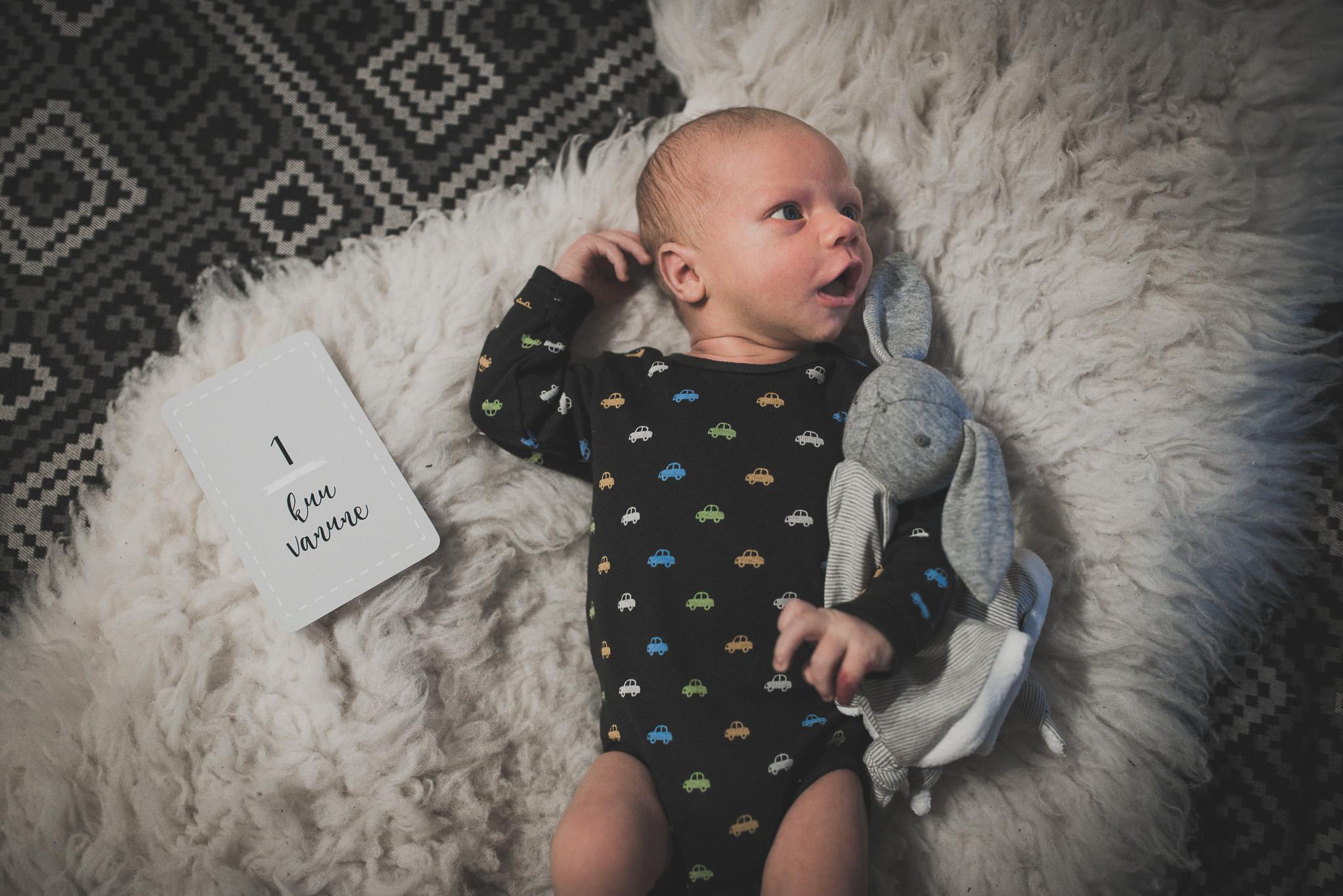 1 kuu vanune